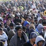 migran.jpg