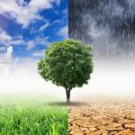 Antidogma - Klímaautizmus kezdőknek