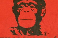 viva-la-evolucion-che-guevara-as-monkey-660x330.jpg