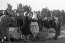 Bocsánatot kért Norvégia a német katonákkal összeálló norvég nők meghurcolása miatt