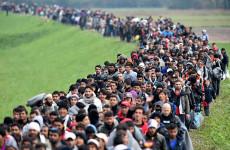 Kire voksolnak majd a migránsok, ha szavazati jogot kapnak?