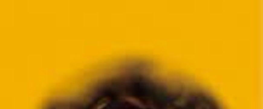 1a6e1172181e926827c89d2c7f10c1ea.jpg