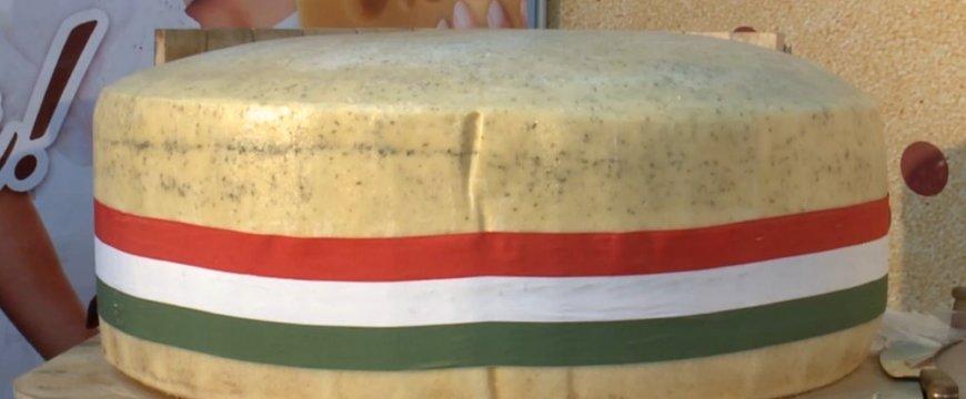 sajt-egyben1-1024x635.jpg
