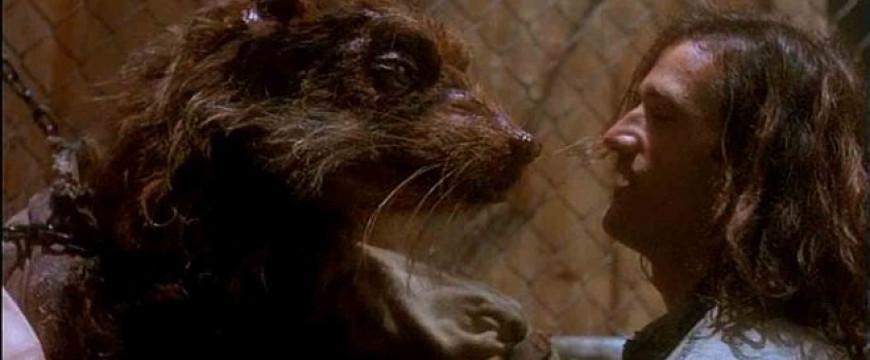 Árpi bácsi, az én kedves patkányom!